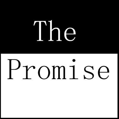 "The image is divided in the middle of the frame, the word ""The"" is written in white on a black background. Below, the word ""Promise"" is written in black on a white background with a thin back border. Both words are written in an elegant serif font."